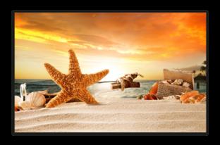 ракушки на песке, закат
