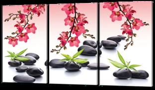 Цветы и чёрные камни