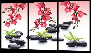 Цветы камни бамбук