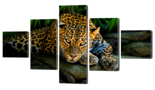 Леопард 118* 64 см