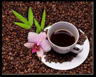 кофе зерна и орхидея