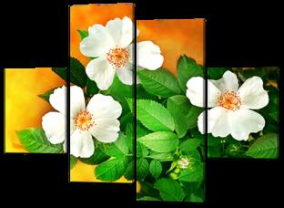 Цветы шиповника 126* 93 см