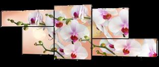 Орхидеи на бежевом 267* 100 см