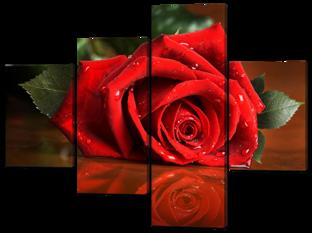 Роза на столе 126* 93,5 см
