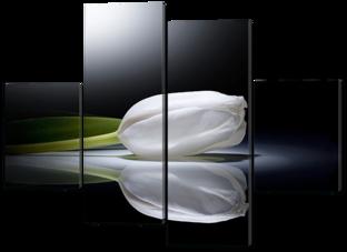 Белый тюльпан 126* 93 см