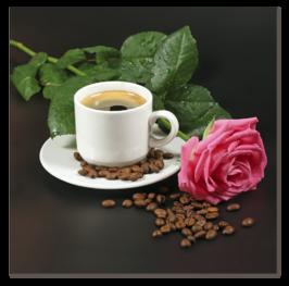 цветок розы и кофе