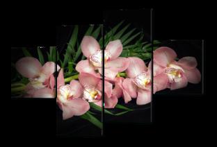 Соцветие орхидеи 114* 166 см