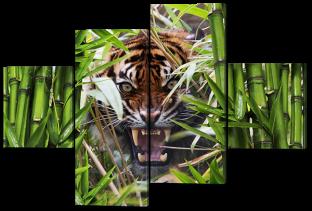 Тигр 166* 114 см