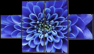 Синяя астра 142* 81 см