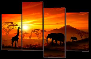 Прерии африканские