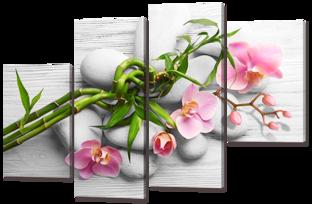 Розовые орхидеи на сером