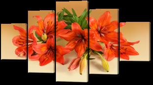Оранжевые лилии 140* 80 см