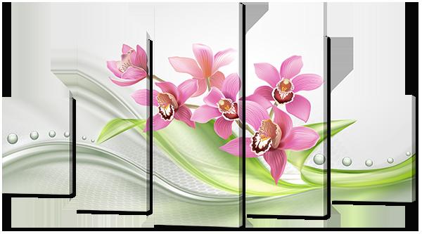 Орхидеи абстракция