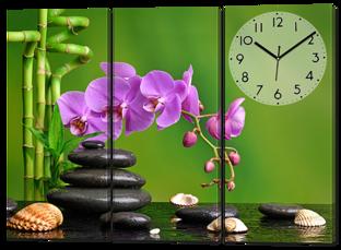 Орхидеи ракушки 94* 70 см