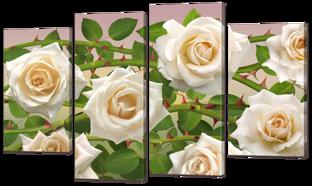 Белые розы 126* 76,5 см
