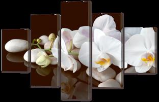 Белые орхидеи на белых камнях 108* 70 см