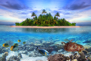 вид на тропический остров Мальдивы
