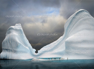 пингвины снежные вершины