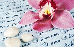 любовь письмо с розовой орхидеей