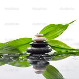 зеленый листья камни дзен