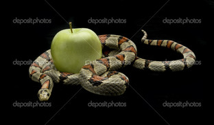 Змея с яблоком
