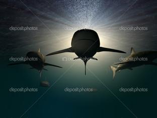 xелюсти акула