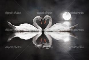 луна лебеди