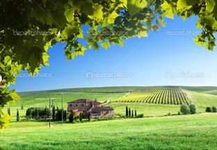 пейзаж ферма дом