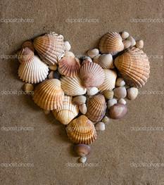 ракушки сердце на песке