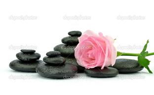 розовая роза и чёрные камни