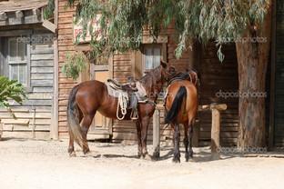 две лошади на привязи