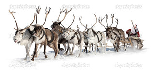 Санта на оленях