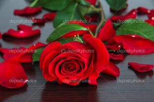 красивая красная роза на деревянном столе