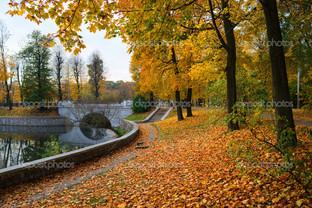 набережная осень в Калининграде