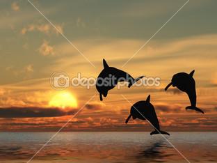 три дельфины и закат