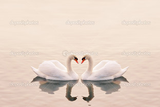 лебеди на бежевом фоне