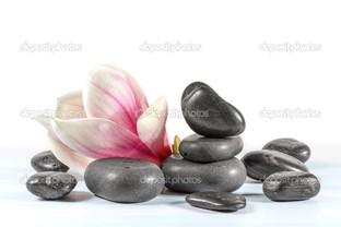 камни с цветком магнолия