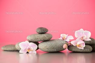 орхидеи на розовом