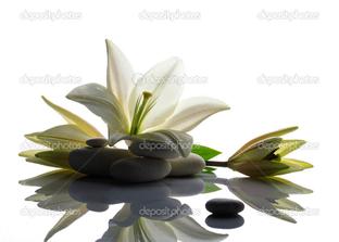 лилии и камни отражение