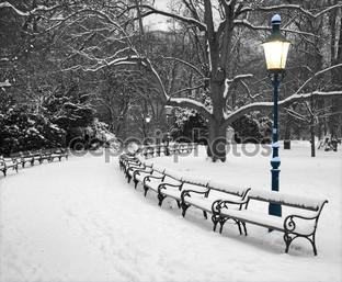 Вена Штадтпарк зимнее утро