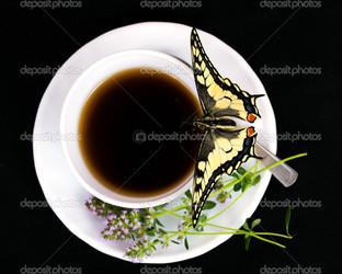 бабочка и кофе