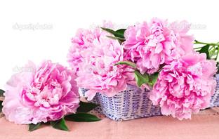 корзина розовые пионы