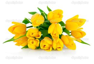 жёлтый букет