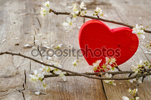 красное сердце цветок