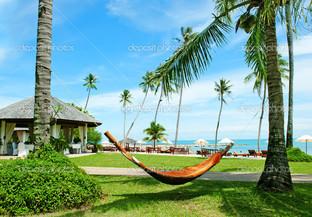 гамак между пальмами на тропическом пляже