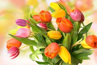 настроение тюльпаны