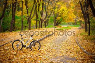 велосипед в осеннем парке