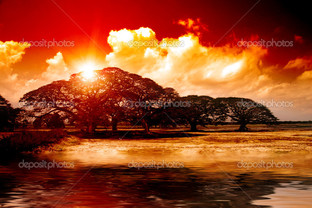 красно-оранжевый пейзаж