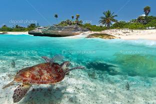 карибском море пейзаж