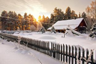 забор и дом в снегу в лесу